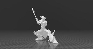 MasterYi 3D