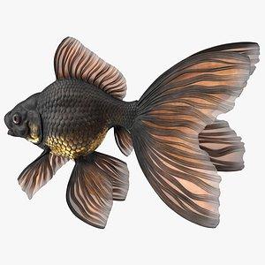 Black Moor Goldfish Rigged for Modo 3D