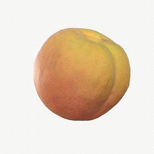 3D 02 apricot fruit modeled