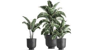 3D plants interior pots planter