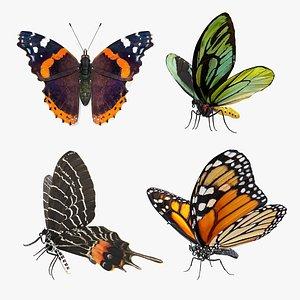 3D Butterflies Collection 3