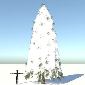 3D fraseri tree snow model