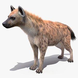 neutral pose hyena fur model