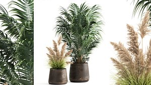 3D Houseplants in a flowerpot for the interior 973