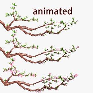 flower peach 3D model