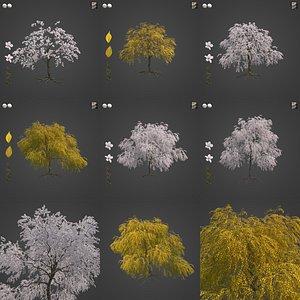 3D 2021 PBR Weeping Higan Cherry Collection - Prunus Subhirtella