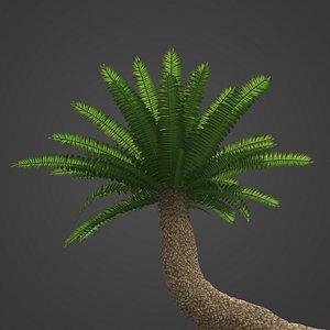 2021 PBR Bushmans River Cycad - Encephalartos Altensteinii model