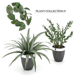 3D plant collection 9