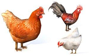 poultry farm animal bird model