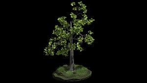 3D tree fairy model