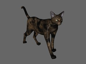 3D Cat Cat Cat Farm cat Black cat Blue cat Siamese cat Beautiful short orange cat Orange cat Leopard ca model