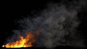 3D Blazing Fire VDB model