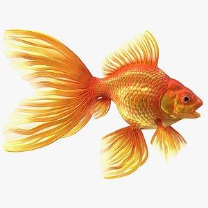 Orange Fancy Fantail Goldfish Rigged for Cinema 4D 3D model