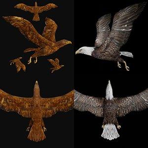 Rigged bald eagle and golden eagle 3D model