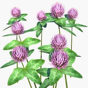 clover flower model