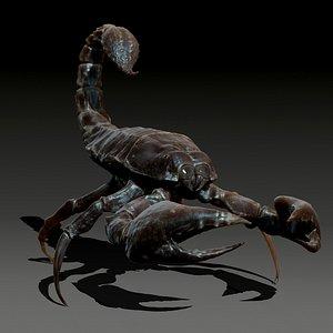 3D animal scorpion