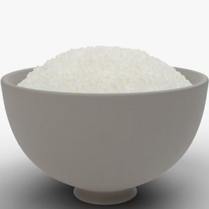 Rice Bowl model