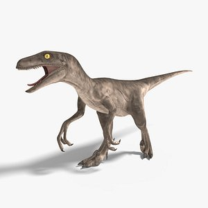 velociraptor rigged animation model