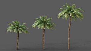 3D XfrogPlants Rough Tree Fern - Cyathea Australis