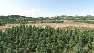 forest landscape model