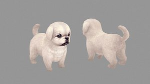 Cartoon pet puppy - White Pekingese - baby dog 3D model