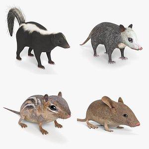 3D skunk chipmunk mouse