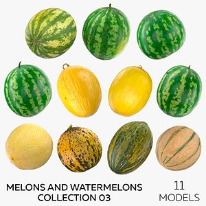 Melons and Watermelons Collection 03 - 11 models 3D model