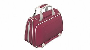 Bag 2 3D model