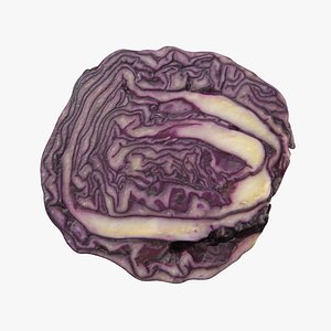 red cabbage model