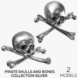 3D Pirate Skulls and Bones Collection - Silver - 2 models