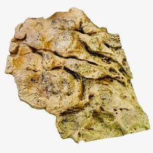 Beach Rock Scan Free Example 3D model