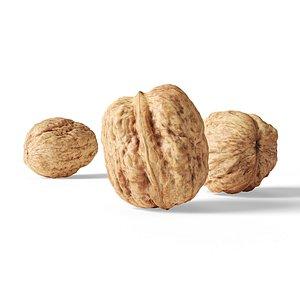 3D walnut v1