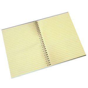 Notebook 1 model
