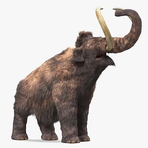 3D Mammoth Adult Roar Pose Fur