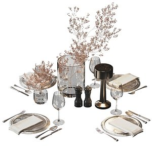 3D Serving set with dried flowers model