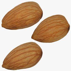 3D model almond set