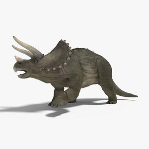 3D model triceratops rigged animation