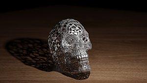 skull science anatomy 3D model