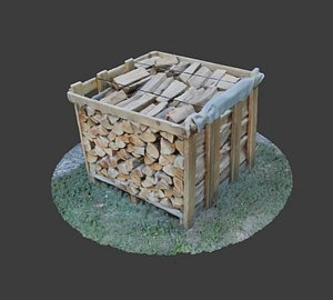3D model wood heap scanned