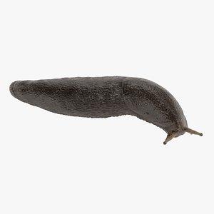 Black Slug Rigged 3D