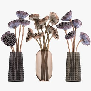3D Bouquet of dried flowers in a glass vase 152