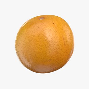 grapefruit grape fruit 3D model