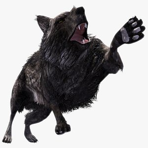 Black Wolf with Fur Rigged Animated 3D model