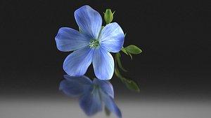 3D linum flower flax plant model