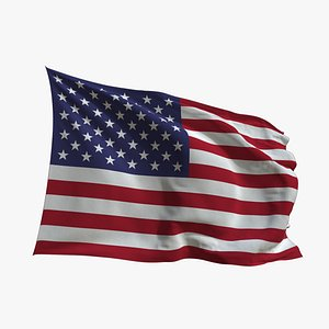 Realistic Animated Flag - Microtexture Rigged - Put your own texture - Def USA 3D model