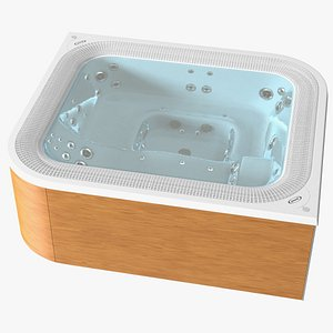 3D Jacuzzi Virtus Hot Tub with Water
