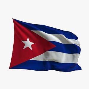 Realistic Animated Flag - Microtexture Rigged - Put your own texture - Def Cuba model